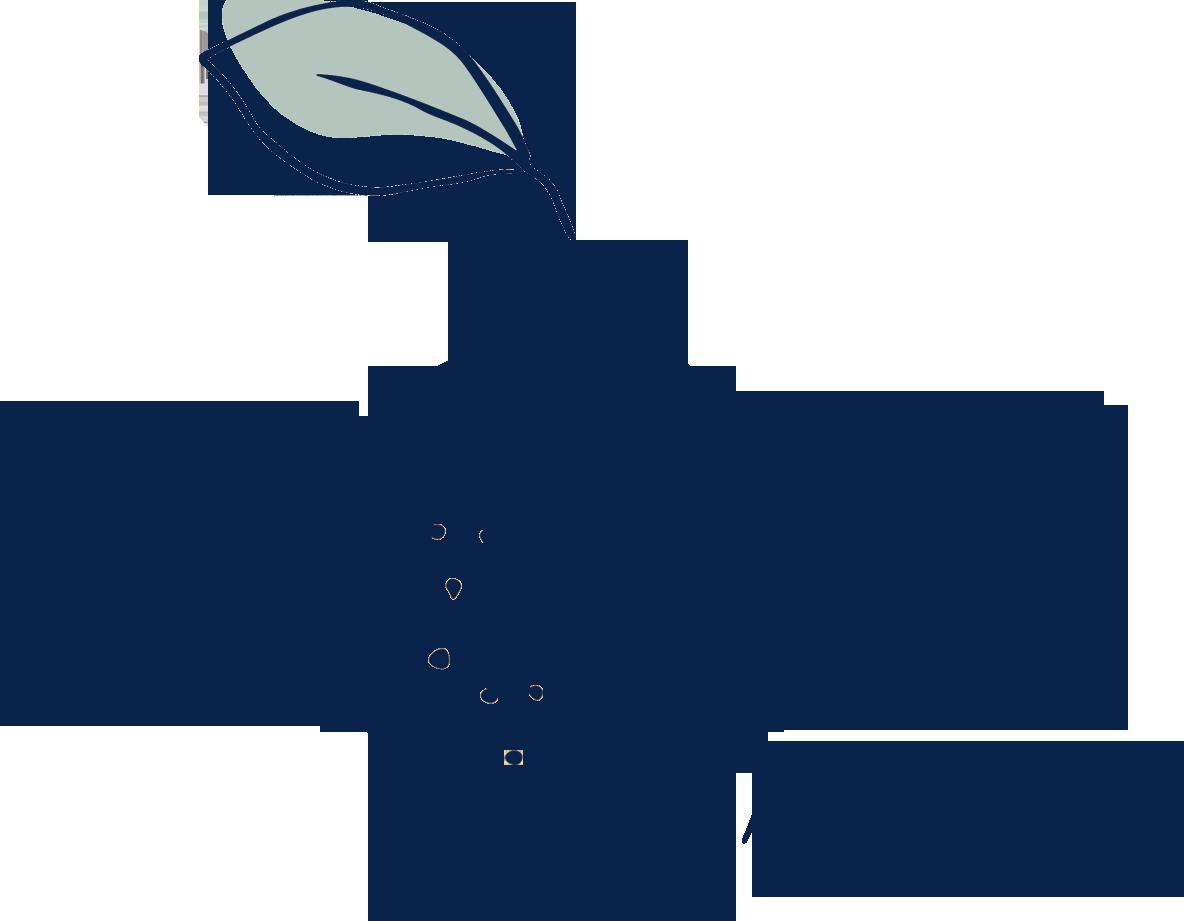 Lemom | Family Store